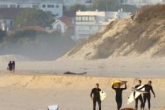 Goodtimes-Surfcamp-Surfen-6